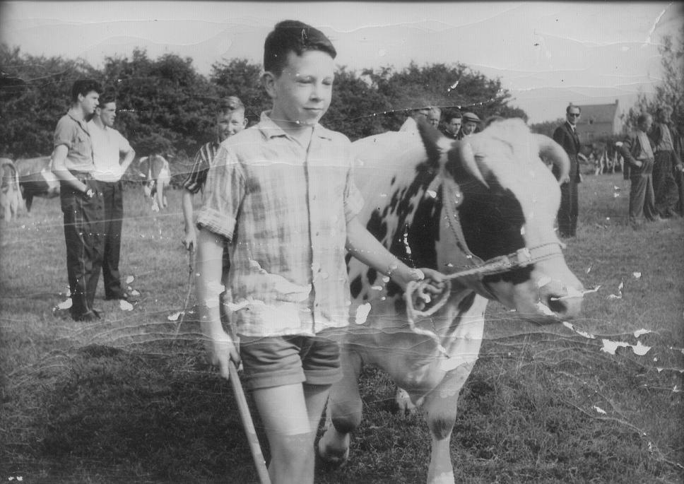Datering 1961. Fokveedag.