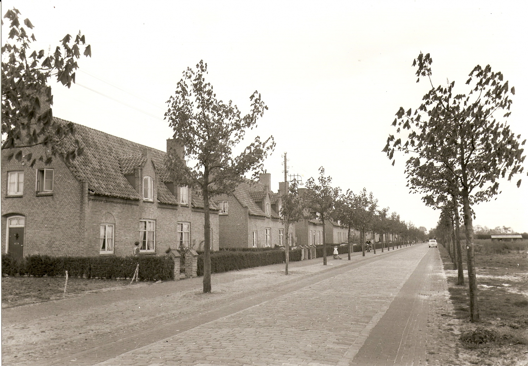 Datering 1950. Schafratstraat
