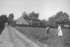 Datering 1955. Huifke