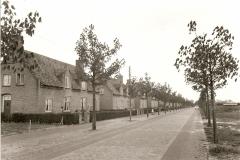 Datering 1950. Schafratstraat